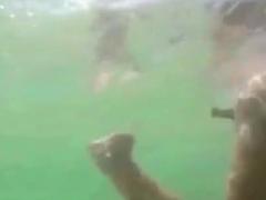 Real Bottlediving Near Public Beach